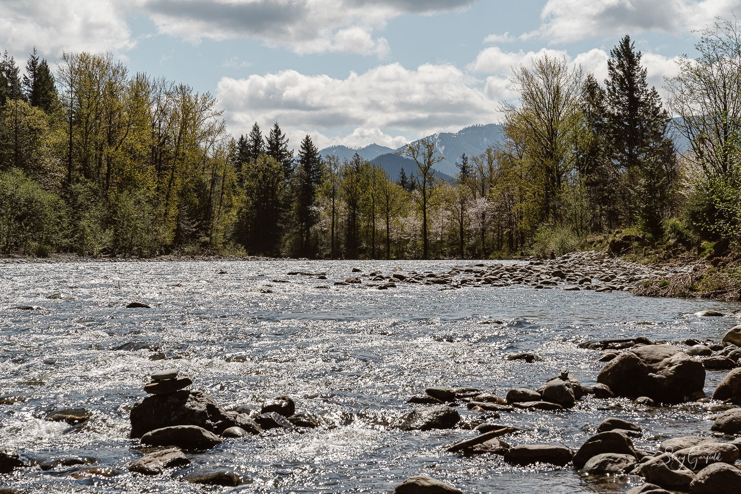 Snoqualmie Valley Elopement Photographer, Middle Fork River